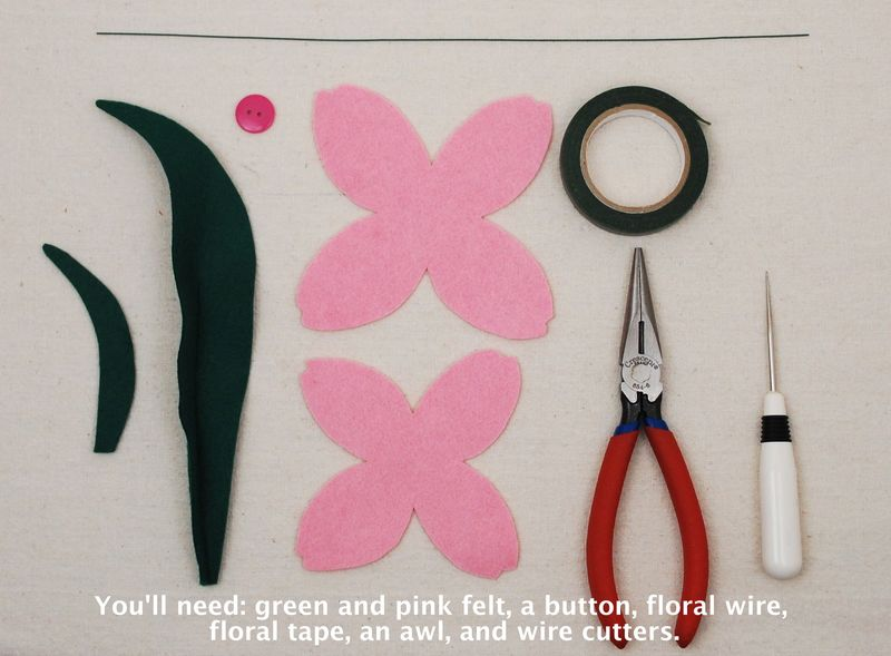 Tulip Tutorial Step 1