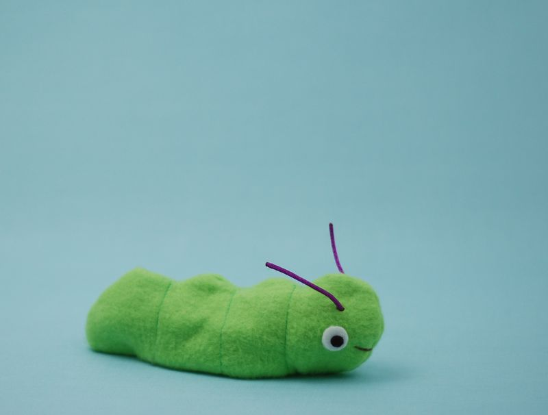Plush catepillar