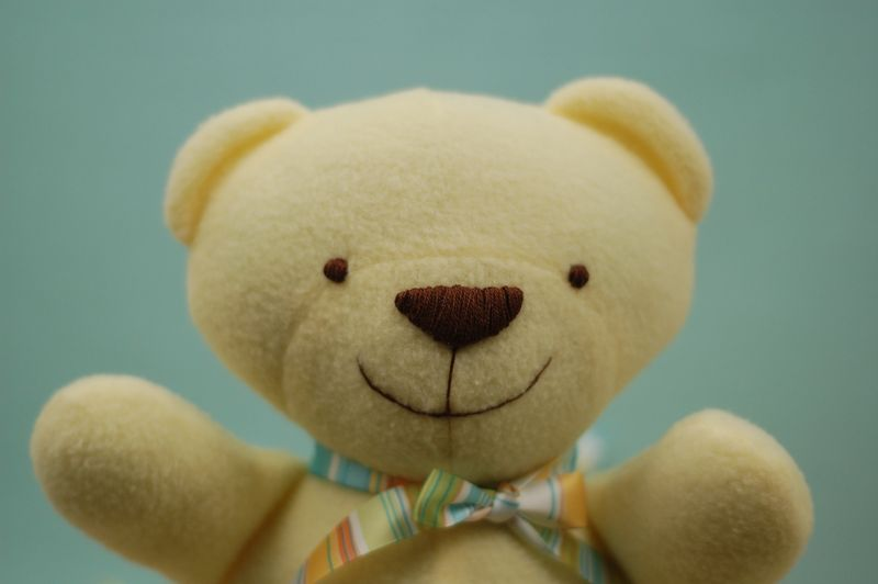 Yellow Teddy Up Close